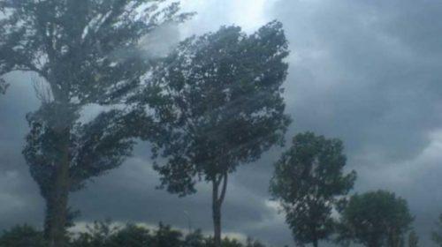 Vreme severă în țară. Cod galben de vânt puternic și temperaturi scăzute