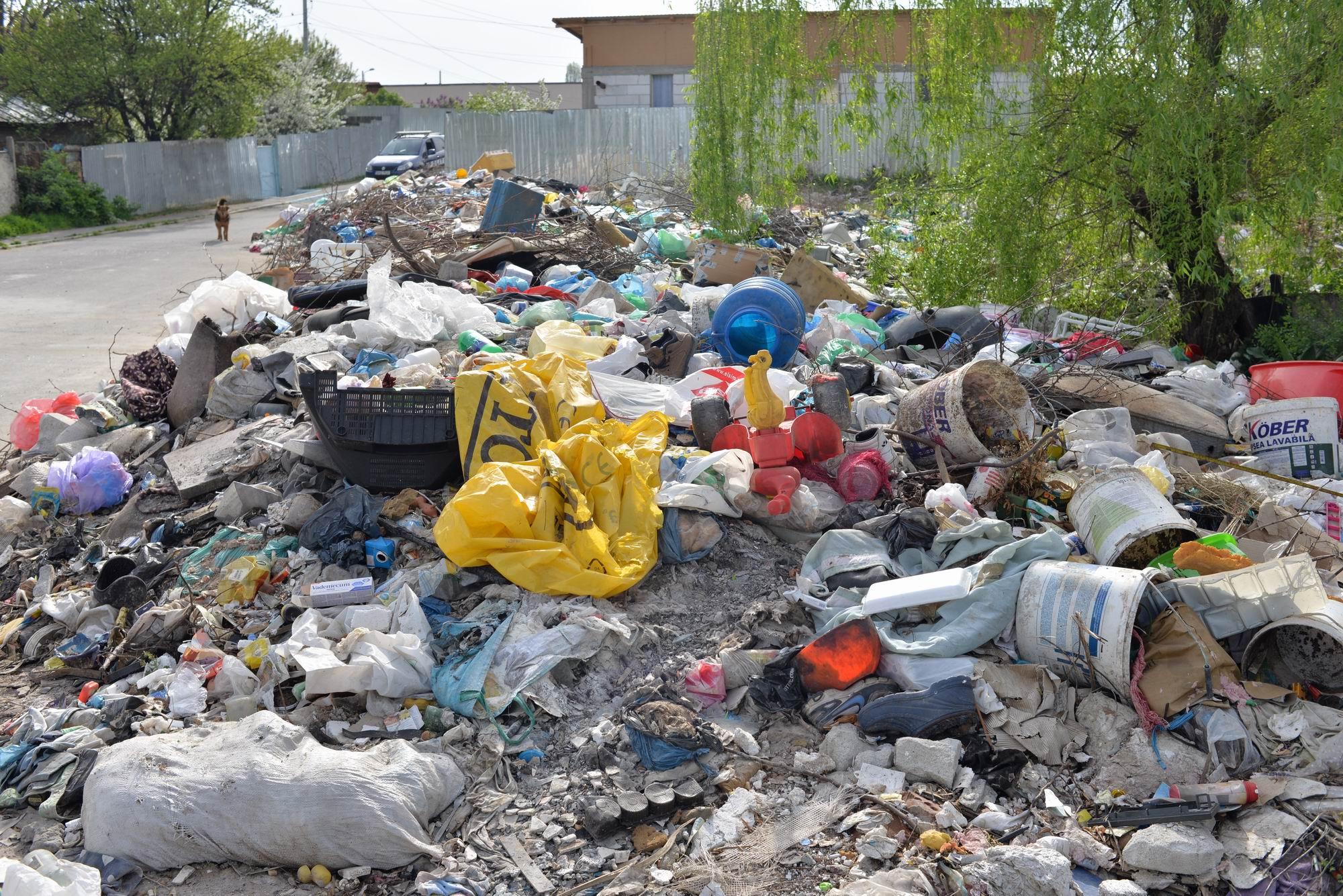 ALERTĂ! Acțiune de amploare a comisarilor de mediu și a polițiștilor 9