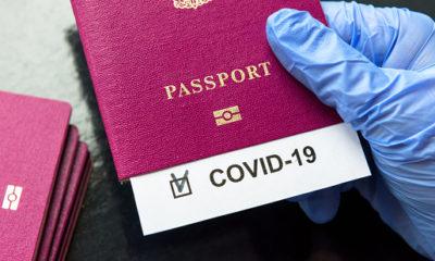 Ultima Oră! Guvernul introduce un tip de pașaport! Măsura valabilă în toată Uniunea Europeană 5
