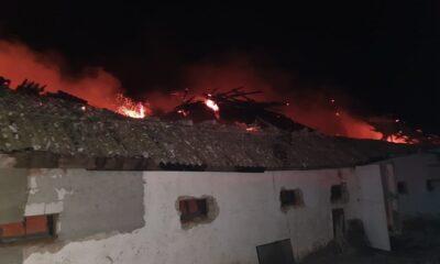 Adăpost de la o fermă de păsări, distrus într-un incendiu. Şase mii de pui au murit 21