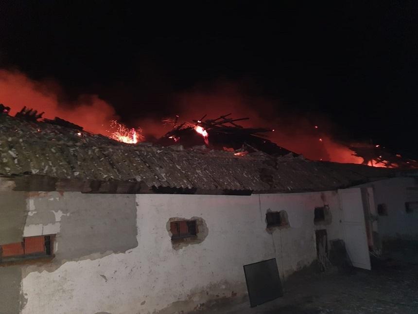 Adăpost de la o fermă de păsări, distrus într-un incendiu. Şase mii de pui au murit 1